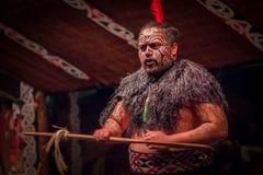 ILHA NORTE, ZEALAND NOVO 17 DE MAIO DE 2017: Feche acima de um homem do líder de Tamaki Maori com a cara tradicionalmente tatooed Fotografia de Stock