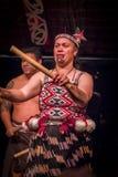 ILHA NORTE, ZEALAND NOVO 17 DE MAIO DE 2017: Feche acima de uma mulher de Tamaki Maori com a cara tradicionalmente tatooed e vest Imagem de Stock