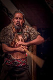 ILHA NORTE, ZEALAND NOVO 17 DE MAIO DE 2017: Homem de Takami Maori com tatooed tradicionalmente em sua cara, vestir tradicional Fotos de Stock Royalty Free