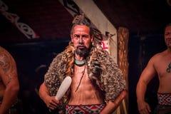 ILHA NORTE, ZEALAND NOVO 17 DE MAIO DE 2017: Homem sério de Tamaki Maori que guarda uma lança de madeira, com tatooed tradicional Imagem de Stock Royalty Free