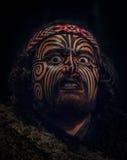 ILHA NORTE, ZEALAND NOVO 17 DE MAIO DE 2017: Retrato do homem do líder de Tamaki Maori com a cara tradicionalmente tatooed dentro Imagens de Stock Royalty Free