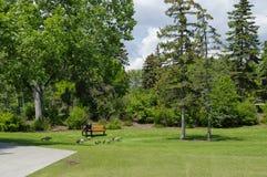 A Ilha Parque em Calgary, Alberta Canada do príncipe Imagens de Stock