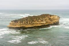 Ilha pequena bonita perto da grande estrada do oceano, Campbell National Park portuário, Austrália imagens de stock royalty free