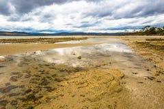 Ilha selvagem de Bruny em Tasmânia imagens de stock