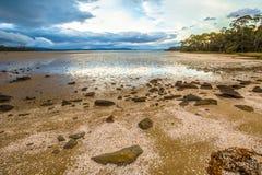 Ilha selvagem de Bruny em Tasmânia imagem de stock