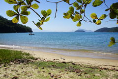 Ilha stora Brasilien Royaltyfri Fotografi