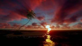 Ilha tropical com a palmeira cercada pelo oceano, nascer do sol bonito do timelapse video estoque