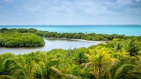 Ilha tropical de Contoy do mexicano Fotos de Stock Royalty Free