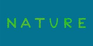Ilha tropical do texto da natureza Imagem de Stock