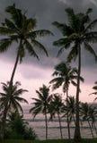 Ilha tropical, Sri Lanka Fotografia de Stock Royalty Free
