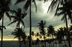Ilha tropical, Sri Lanka Fotografia de Stock