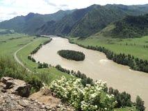 Ilha verde no rio Fotos de Stock