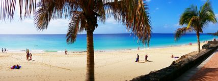 Ilhas Canárias panorâmicos Palm Beach Fotografia de Stock Royalty Free