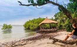 Ilhas de África ocidental Guiné-Bissau Bijagos fotos de stock royalty free