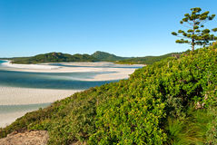 Ilhas do domingo de Pentecostes (Queensland Austrália) Fotografia de Stock
