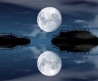 Ilhas na noite ilustração royalty free