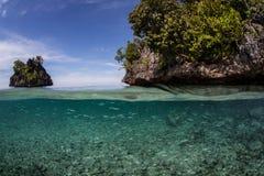 Ilhas pequenas dos peixes e da pedra calcária Foto de Stock