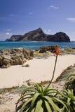 Ilheu da Cal island. Porto Santo, Madeira Islands, Portugal Royalty Free Stock Photos
