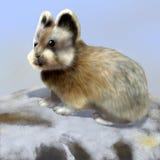 Ili pika. Digital illustration of a Ochotona iliensis, ili pika stock illustration