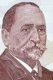 Ilia Chavchavadze un ritratto Fotografia Stock Libera da Diritti
