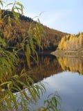 Ilim河在东西伯利亚,俄罗斯,秋天风景 免版税库存图片