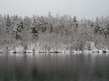 Ilim河在东西伯利亚 免版税库存照片