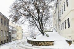 Ilirski trg, Zagreb, Croatia. Ilirski trg during a snowstorm, Zagreb, Croatia Stock Images