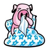 Ill pig Stock Image