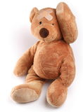 Ill teddy bear with plaster on its head. Isolated on a white background Royalty Free Stock Image