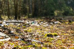 Illegal garbage in spring forest Stock Images