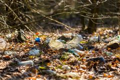 Illegal garbage in spring forest Stock Image