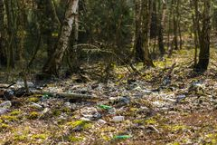 Illegal garbage in spring forest Royalty Free Stock Photography