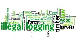 Illegal logging Stock Images