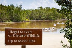 Illegal to Feed or Disturb Wildlife Royalty Free Stock Photos