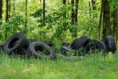 Illegally Dumped Car Tires. Car tires that have been illegally dumped in the woods are an eyesore and an environmental risk Royalty Free Stock Photo