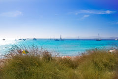Illetes Formentera beach turquoise water Stock Photos