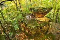 Illinois Autmn landskap Royaltyfri Fotografi