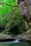 Illinois Canyon. Gently flowing out of Illinois Canyon, a stream falls down into a pool of water. Sandstone canyon walls green moss, fern and trees frame the Royalty Free Stock Image
