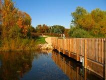 Illinois-Fall stockfotos