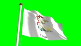 Illinois flag. Seamless  green screen stock video