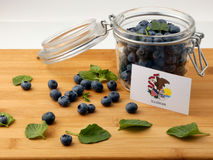 Illinois flag on a wooden plank with blueberries  on whi Stock Photography