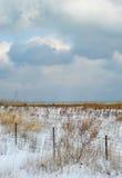 Illinois-Grasland-Mittelwesten-Schnee Lizenzfreies Stockfoto
