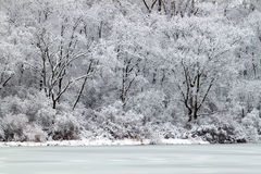illinois jezioro przebija opad śniegu Fotografia Royalty Free
