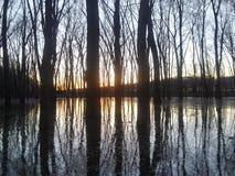 Illinois river. Outdoors nature lake royalty free stock image