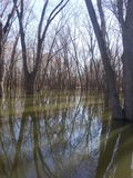 Illinois river. Sunrise outdoors reflection royalty free stock photography