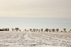 Illinois-Winter-Landschaft Stockbild