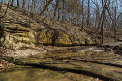 Illinois woodlands. Top of French Canyon on a sunny late Winter's day at Starved Rock, Illinois Royalty Free Stock Photography