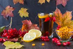 Illness concept: Cup of tea with autumn berries sea buckthorn,  viburnum, rose hip, rowan and fall leaves. Drink with vitamin c. Dark table Stock Image