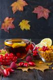 Illness concept: Cup of tea with autumn berries sea buckthorn,  viburnum, rose hip, rowan and fall leaves. Drink with vitamin c. Dark table Royalty Free Stock Photography