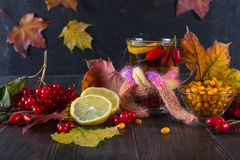 Illness concept: Cup of tea with autumn berries sea buckthorn,  viburnum, rose hip, rowan and fall leaves. Drink with vitamin c. Dark table Stock Photo